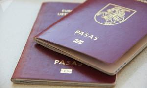 Как правильно запросить деловую визу в Литву?