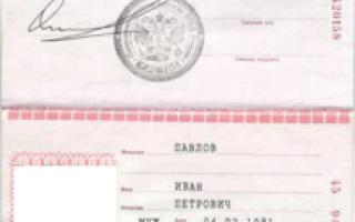 Виза в Венгрию: как получить, документы